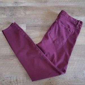 Loft legging pants